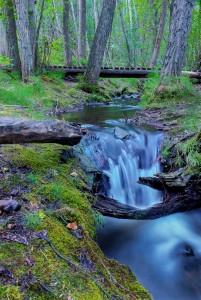 Wilson Stream Whitehorse Yukon